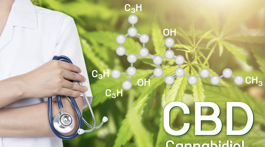 how-cbd-works-inside-your-body