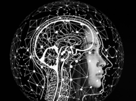 how-learning-new-language-helps-brain-development