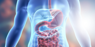 how-to-improve-your-gut-biome